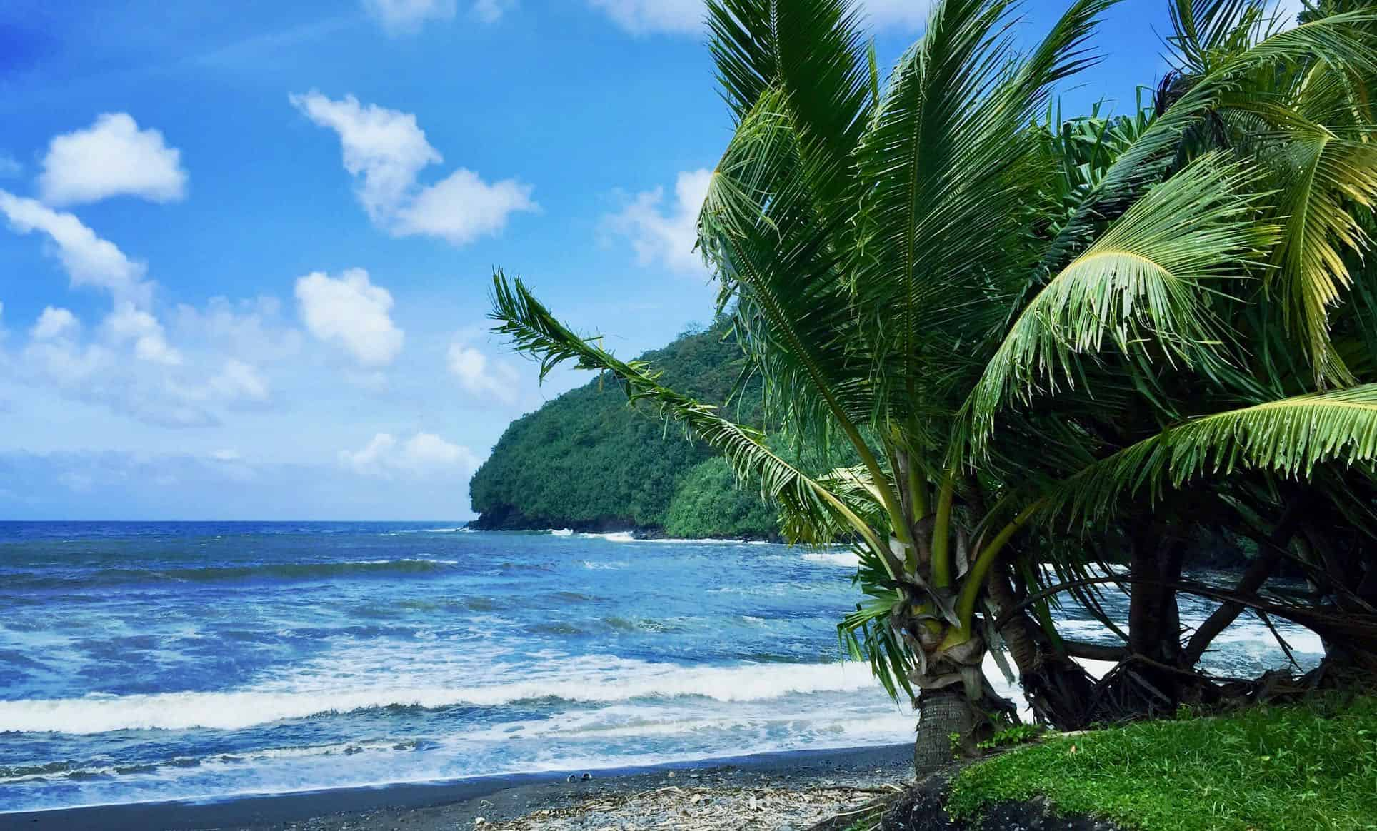 Oceanfront Maui,Real Estate IDX listing search   Georgie Hunter