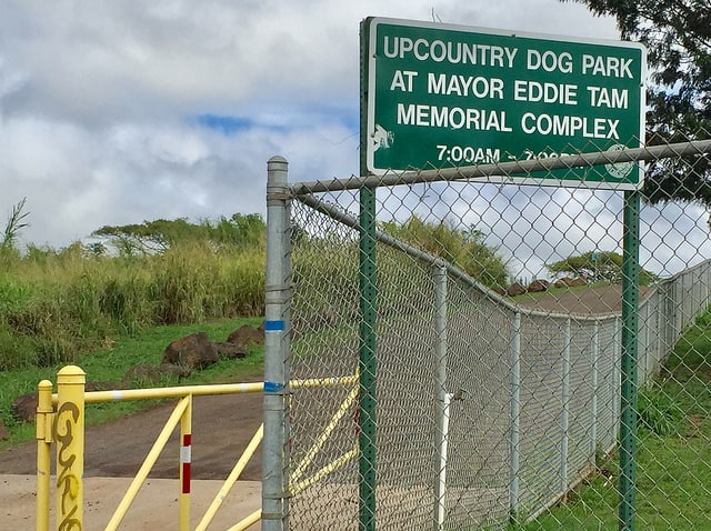 upcountry dog park - makawao maui