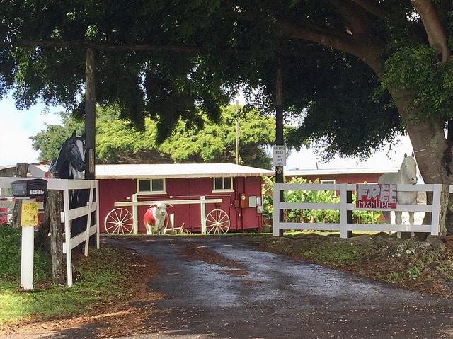 makawao farm scene