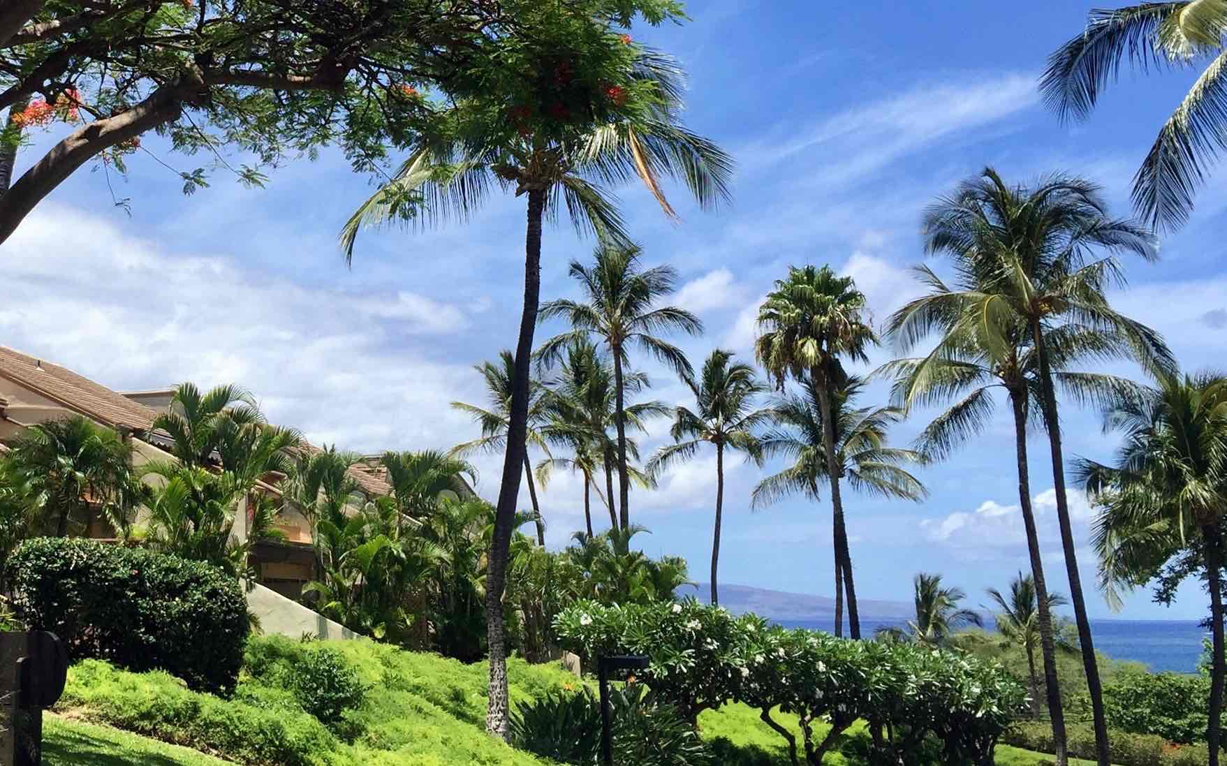maui kamaole views