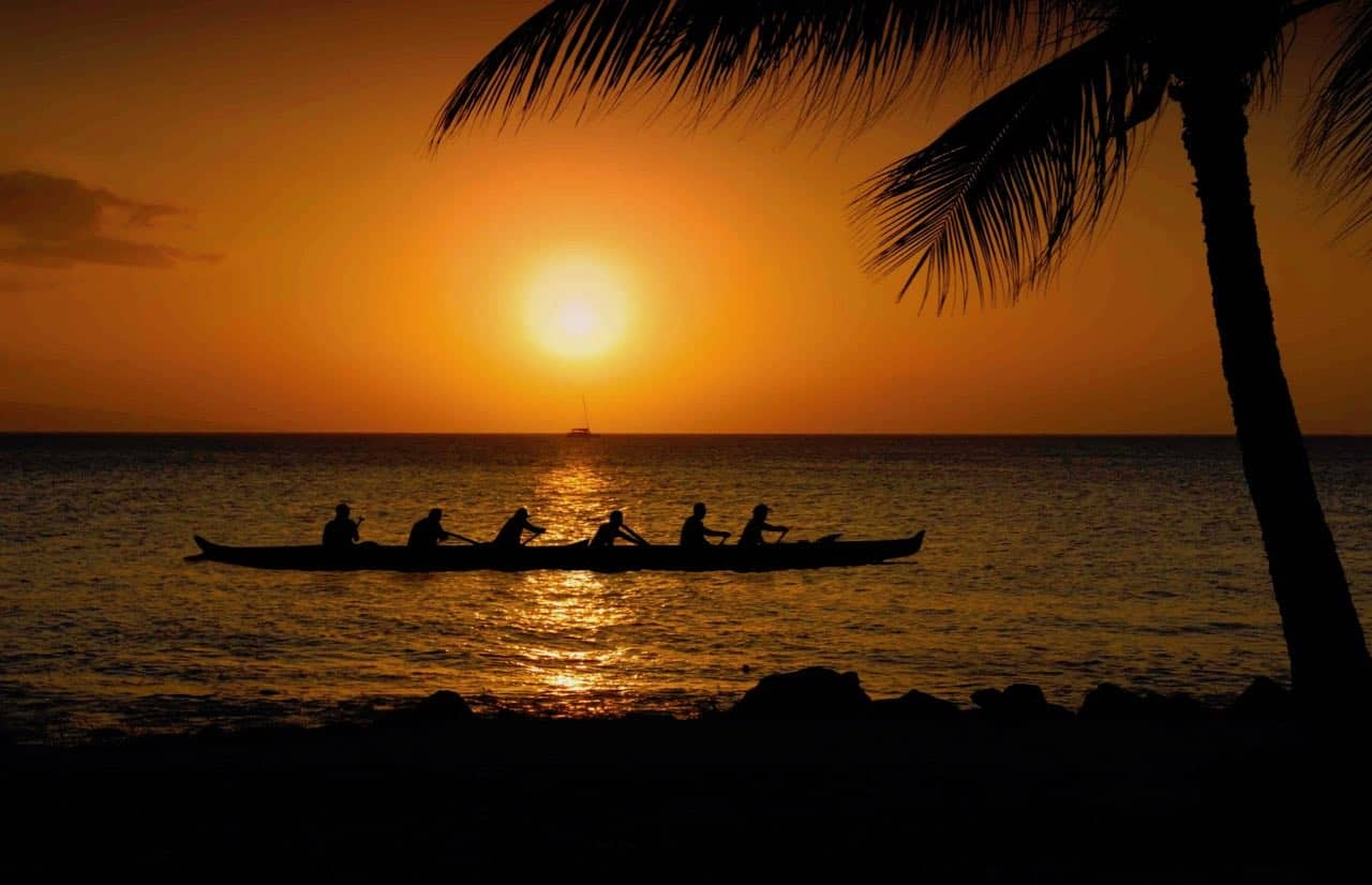 sunset paddlers