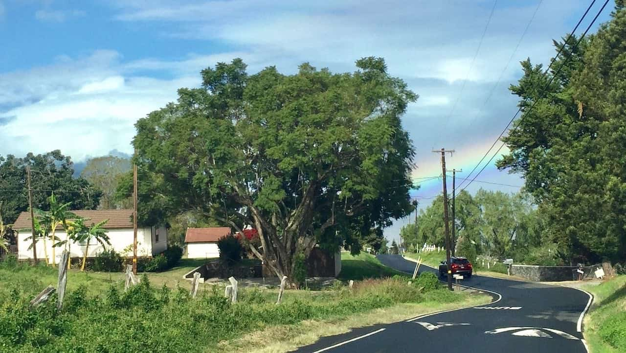 driving in lower Kula Maui
