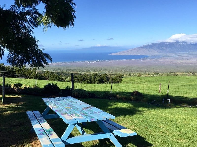 picnic table at Kula Country Farms