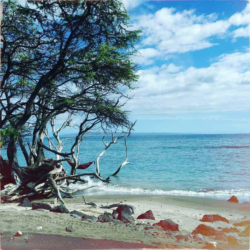west maui coastal beach scene