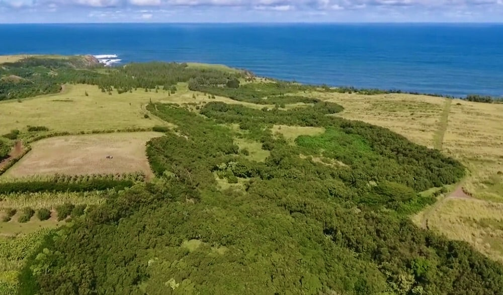 48 acres in Haiku sold to Maui County