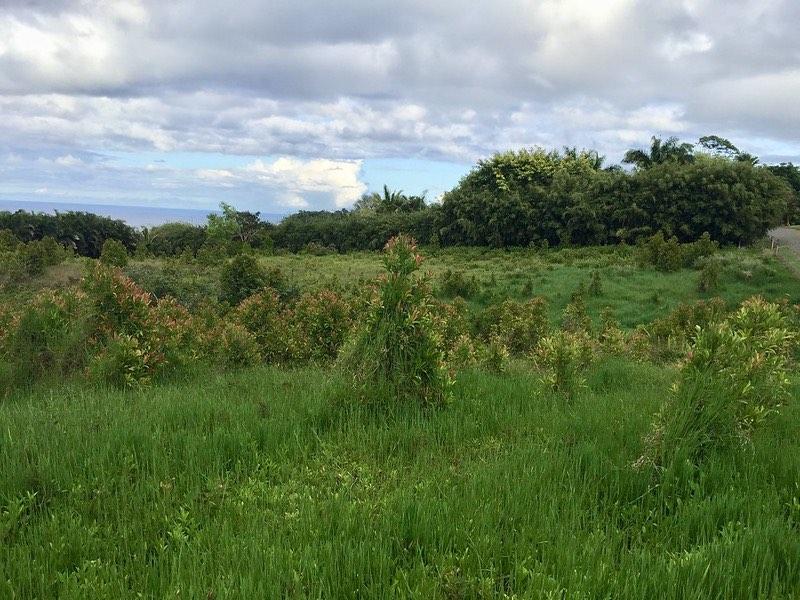 hanauana rd haiku maui vacant land