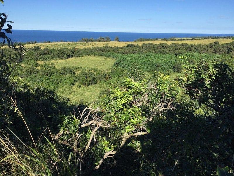 Haiku Maui county land