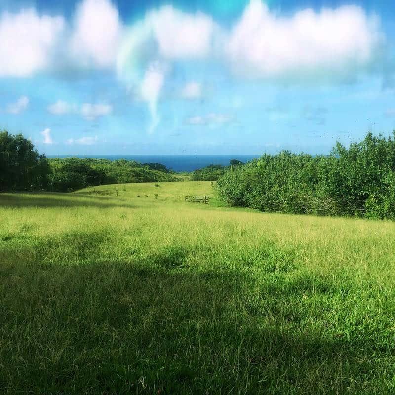 maui ranch lands