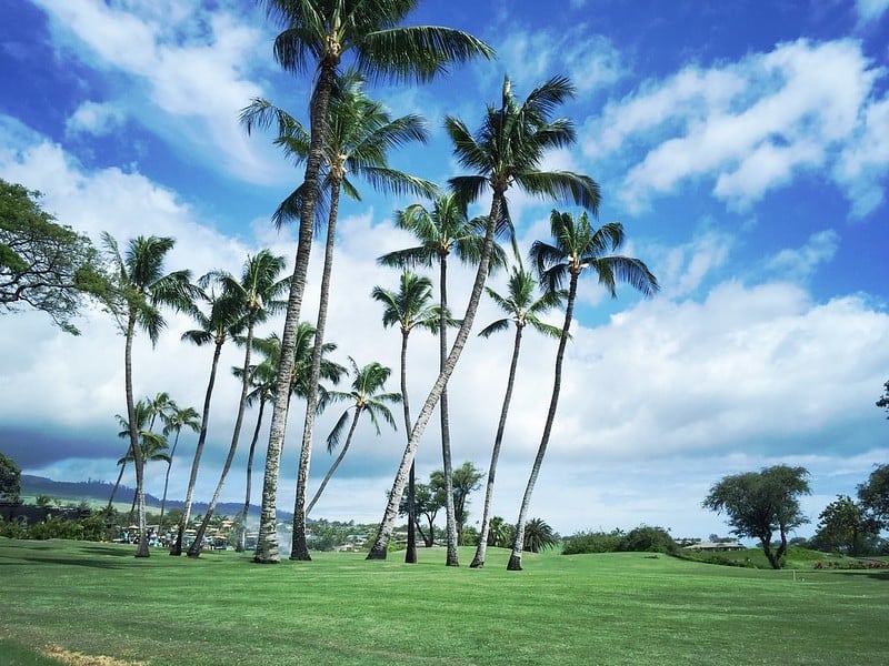makena golf course by the ocean